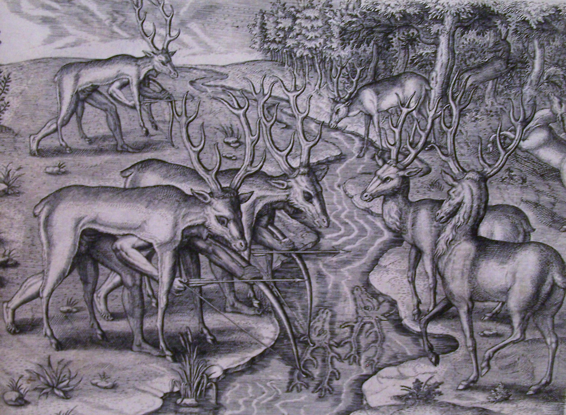 Deer Hunting Drawings Americans Hunting Deer